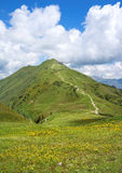 Hiking trail to the Fellhorn in the summery Alps Stock Image