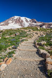 Hiking Trail to Mount Rainier Royalty Free Stock Image