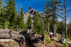 Hiking trail to Mount Thielsen royalty free stock image
