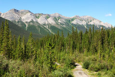 Hiking trail to mountains Stock Images