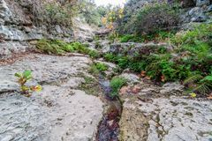 Hiking Trail to the Pedernales River on the Reimers Ranch in Texas. Through the ferns and along the creek past caves and cliffs stock photography