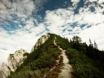 Hiking trail to top Royalty Free Stock Image