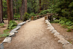 Hiking trail to a wooden bridge. Maintained hiking trail leading to a wooden bridge and forest in Yosemite Valley, Yosemite National Park, California, USA stock photo