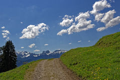 Hiking trail with view to Alps in spring. Hiking trail in the Allgau countryside, Germany, with view to the Alps in the background at a sunny day in spring Royalty Free Stock Photography