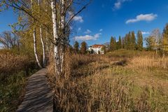 Hiking trail through the wetlands in Jablonne v Podjestedi royalty free stock images