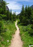 Hiking trail in the wilderness Stock Photos