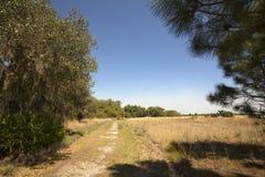Hiking trail winding through Florida scrub at Lake Kissimmee Par Stock Images