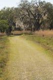 Hiking trail winding through Florida scrub at Lake Kissimmee Par Royalty Free Stock Images