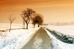 Hiking Trail in Winter. Hiking and biking trail in the winter with snow Royalty Free Stock Image