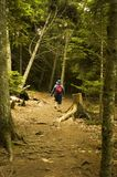 Hiking Trail Woman. A woman hikes on a wooded hiking trail at Wolf's Neck State Park in Freeport, Maine Stock Image