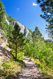 Hiking Trail in Wyoming Vertical Royalty Free Stock Photos