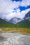 A hiking trail in the Yo-ho National Park, at the canadian Rockies Mountain. Canadian Rockies in Alberta and British Columbia stock photo