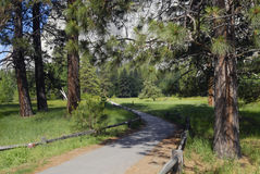 Hiking trail in Yosemite Valley Stock Photo