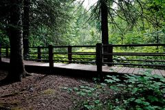 Hiking Trails along Gooseberry River at Gooseberry Falls State Park. In Northern Minnesota in the summer Royalty Free Stock Photos