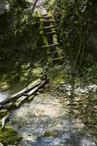 Hiking trails in the Caucasus Mountains. Paths in the mountain. Russia. Caucasus. Hiking trails in the Caucasus Mountains. Paths in the mountain. Wooden bridge stock photos