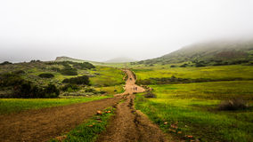 Hiking Trails at Wildwood Regional Park on a Foggy Day Stock Image