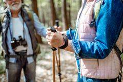 Hiking with trekking sticks. Senior men and women hiking with trekking sticks in the forest, close-up view with cropped face stock image