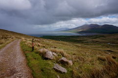 Hiking up the mountain in ireland. Towards brandon peak Royalty Free Stock Photos