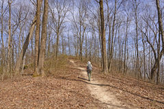 Hiking up a Mountain trail Stock Photography