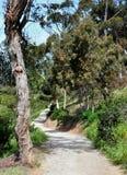 Hiking an Urban Trail. San Diego Presidio Park Trail Royalty Free Stock Photography