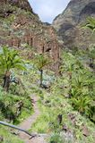 Hiking in the Valle Gran Rey on La Gomera. Royalty Free Stock Photos