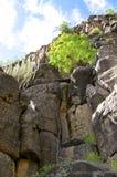 Hiking in the Valle Gran Rey on La Gomera. Stock Image