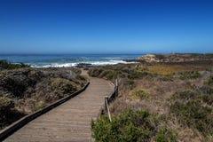 Hiking, walking, and biking on beautiful seaside trails Stock Images