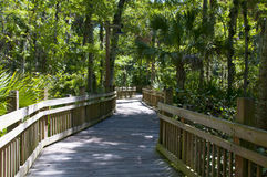 Hiking walkway Royalty Free Stock Photography