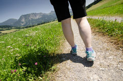 Hiking on a way with meadow and flowers Stock Image