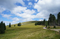 Hiking on the Westweg in the Black Forest, Germany. Long distance hiking trail Westweg to the Feldberg in the Black Forest through meadow and forest, blue sky Stock Image