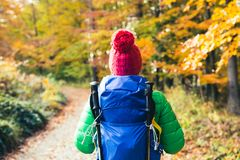 Hiking woman with backpack looking at inspirational autumn golde. N woods. Fitness travel and healthy lifestyle outdoors in fall season. Travelling female Royalty Free Stock Photo