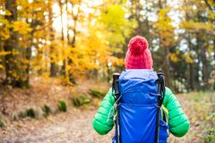 Hiking woman with backpack looking at inspirational autumn golde Stock Images