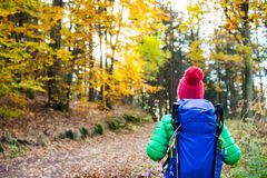 Hiking woman with backpack looking at inspirational autumn golde Royalty Free Stock Photography