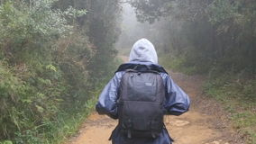 Hiking woman with backpack running in tropical wet forest. Young girl in raincoat jogging on wood trail during travel. Follow to female tourist stepping on the stock footage