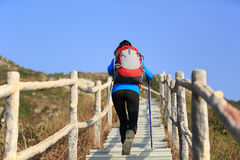 Hiking woman climbing mountain   Royalty Free Stock Photography