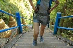 Hiking woman climbing up to mountain peak Royalty Free Stock Photography