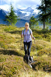 Hiking woman with dog in mountains. Hiking woman with dog Boston Terrier at trail in alps mountains Stock Images