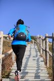 Hiking woman running at mountain stairs Royalty Free Stock Photography