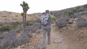 Hiking Woman Trail Goes Up The Hill Adjusts Her Cap, Back View, Slow Motion. A female tourist with a backpack and trekking sticks, she climbs the mountain path stock video footage