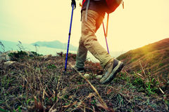 Hiking woman Royalty Free Stock Photo