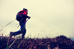 Hiking woman. Hiking young asian woman walking on seaside mountain peak Stock Images