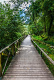 Hiking wooden passage or path Royalty Free Stock Image