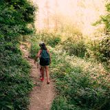 Hiking in the woods. Mother and daughter are walking on a path royalty free stock image