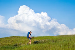 Hiking young woman with backpack and trekking poles Royalty Free Stock Photos