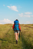 Hiking young woman with backpack and trekking poles walking. In a green meadow Royalty Free Stock Photography
