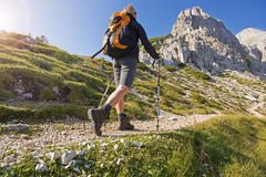 Hiking royalty free stock image