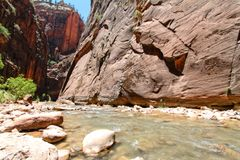 Hiking at Zion national park Stock Photos