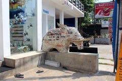 Hikkaduwa,斯里兰卡城市视图  库存图片