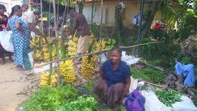 HIKKADUWA, ШРИ-ЛАНКА - ФЕВРАЛЬ 2014: Местная женщина сидя и продавая на рынке Hikkaduwa Рынок Hikkaduwa воскресенья знан для его видеоматериал