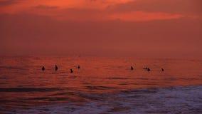 HIKKADUWA, SRI LANKA - FEBRUAR 2014: Ansicht von Hikkaduwa-Strand bei Sonnenuntergang, während Wellen spritzen und Leute genießen stock video footage